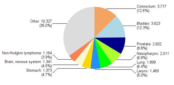 Répartition des différentes localisations cancéreuses en Algérie (sexe masculin-Globocan 2012)